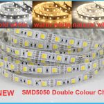 White & Warm White in One LED strip, 5M 05